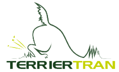 terrier tran