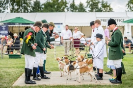 Jack Higgs helping his mum Kate Higgs showing the Trinity Foot and South Herts Beagles